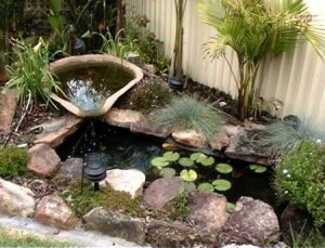 100 150 200 And 300 Gallon Small Koi Pond The Ultimate Guide
