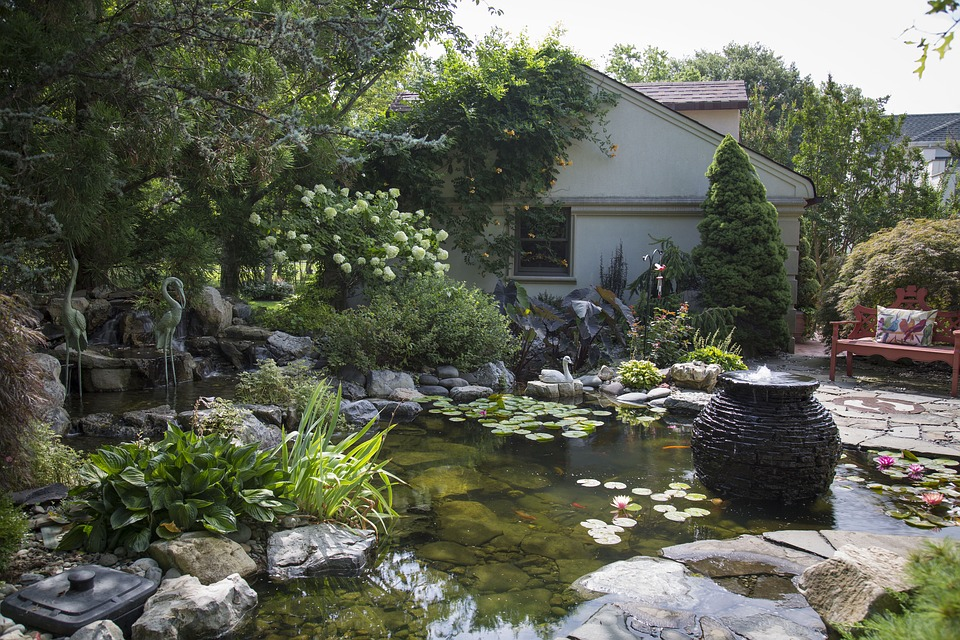 How Deep Should A Koi Pond Be Answered And Explained