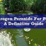 Hydrogen Peroxide For Ponds