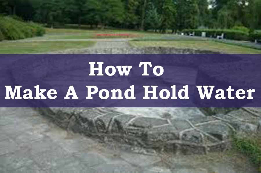 Making A Pond Hold Water