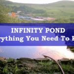 An Infinity Pond