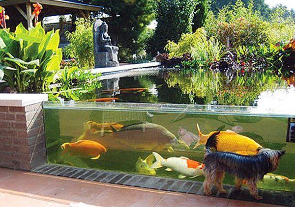 Glass made pond
